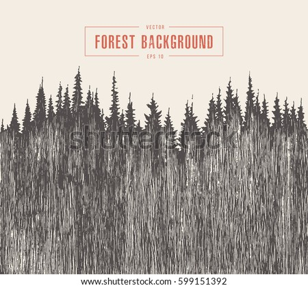 pine forest background  vector...