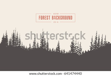 pine forest background  vector