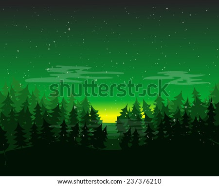 pine forest environment at