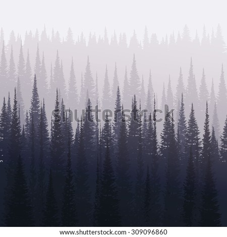 pine forest in winter nature