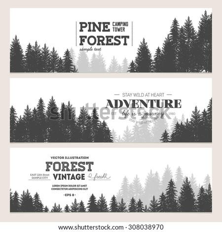 pine forest journey banner