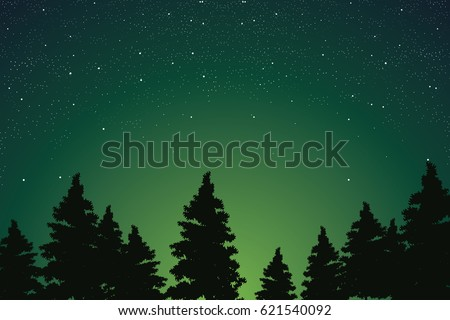 Pine Forest Scenery with Starry Night Sky Vector Illustration.