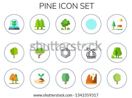 pine icon set 15 flat pine