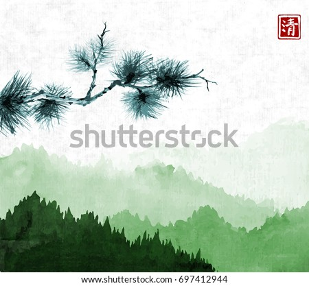 pine tree branch and green