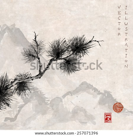 pine tree branch and mountains