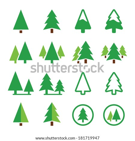 pine tree  park vector green