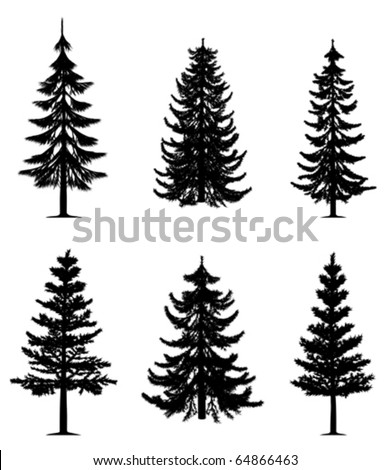 Pine trees collection (vector)