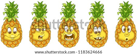 pineapple fruit food concept