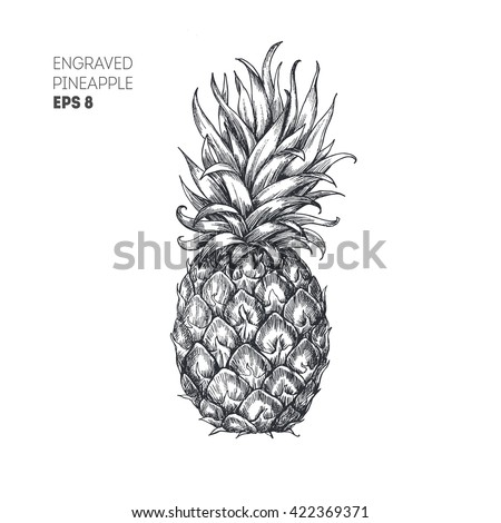 pineapple illustration hipster