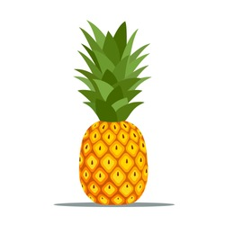 Pineapple. Illustration of pineapple fruit with isolated cartoon style on white. summer fruits, for a healthy and natural life,  Vector illustration , vector editable.