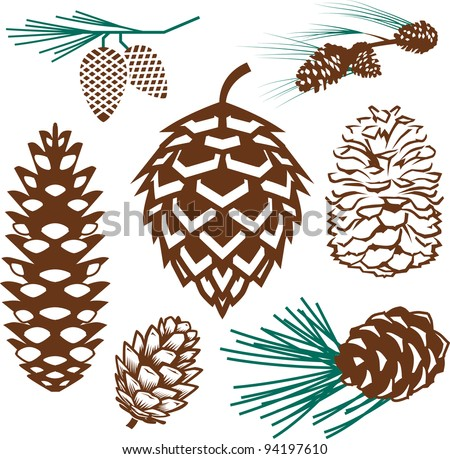 Pinecone Collection Stock photo ©