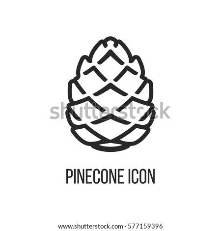 Pinecone Line Icon Vector