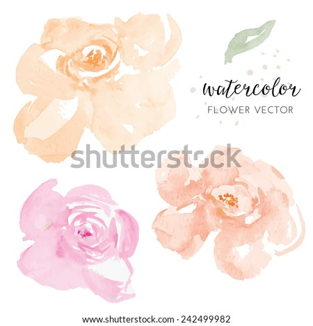 Pink and Orange Vector Watercolour Flowers. Watercolor Vector Flowers
