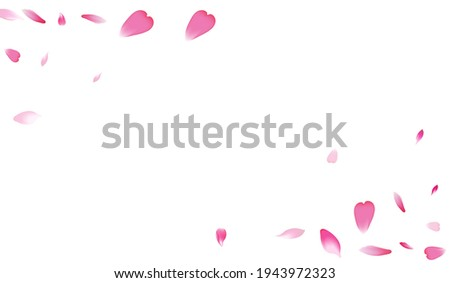 Pink Apple Petal Vector White Background. White Soft Flower Petal Template. Lotus Petal Blossom Product. 3d Rose Petal Poster.