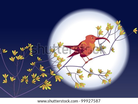 Pink blooming colibri sitting on a branch against the backdrop  of the Moon - stock vector