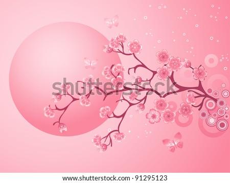 Pink Cherry Blossoms Sakura