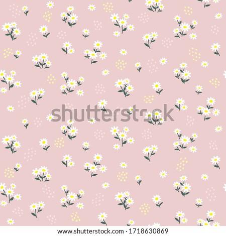 Pink daisy seamless pattern. Floral print ストックフォト ©