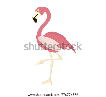Pink flamingo isolated on white background. Exotic bird. Zoo animal. Tropical bird. Flat vector illustration.
