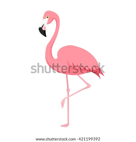 Pink flamingo vector illustration isolated on white background.