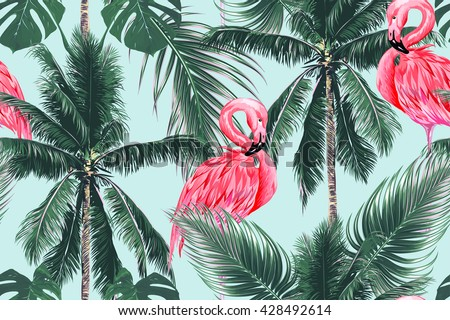 pink flamingos  exotic birds