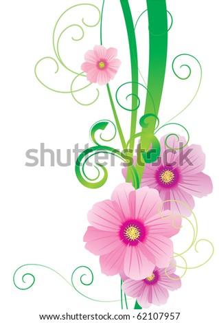 pink flowers abstract color backdrop