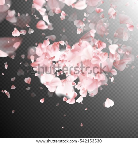 pink petals falling on