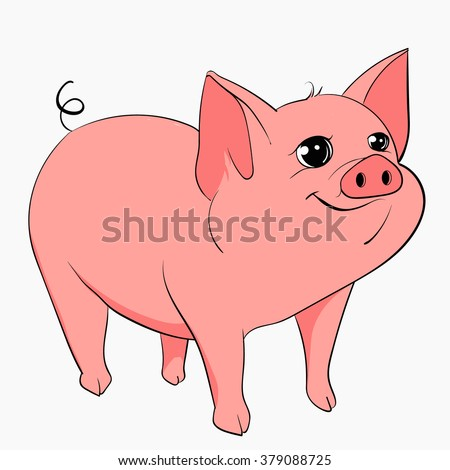 pink pig on a white background