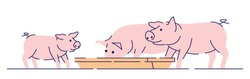 Pink pigs feeding flat vector illustration. Livestock farming, animal husbandry and breeding cartoon concept with outline. Meat production farm. Hog, piglets eating isolated on white background