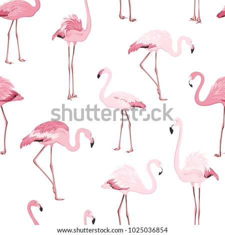 Stock Photo Pink red exotic flamingo birds species seamless pattern. Detailed feather drawing. Standing moving leaning postures. Isolated on clean white background. Africa America continents fauna.