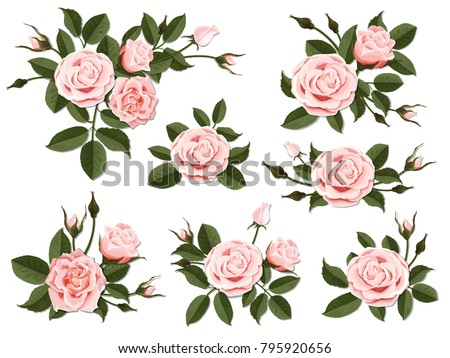 pink rose boutonniere set for