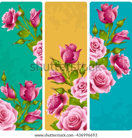 pink rose frames vector set of