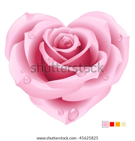Pink rose in the shape of heart - stock vector