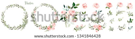 Pink rose. Set: wreaths, floral arrangements of roses, leaves, branches and design elements, flowers,roses, twigs.