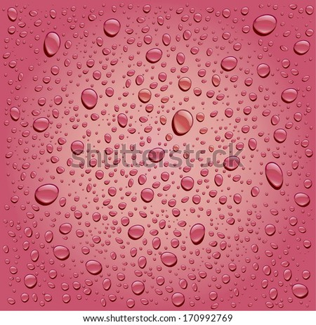 pink rose water droplets