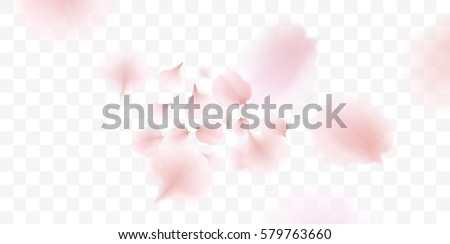 Shutterstock Pink sakura falling petals vector background. 3D romantic illustration