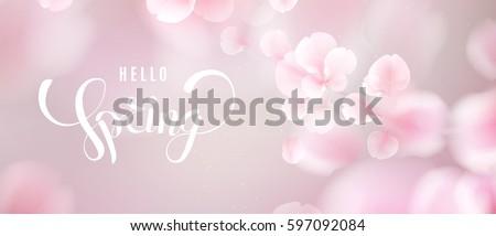 pink sakura falling petals