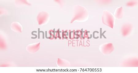 pink sakura petals falling