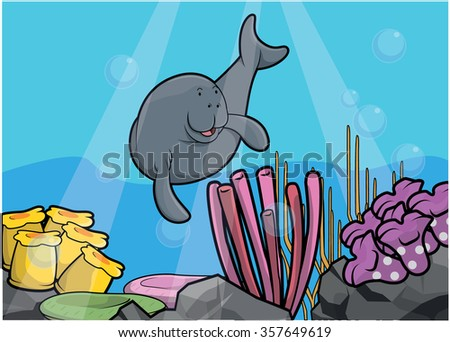 pinniped underwater scenery