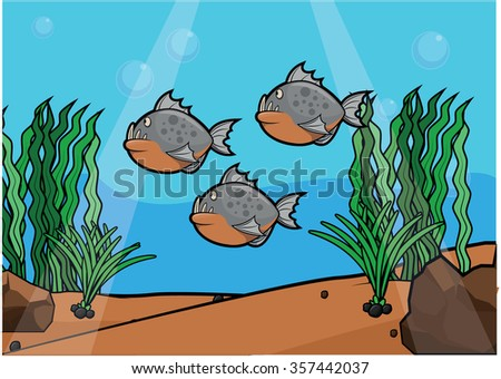 piranha underwater scenery
