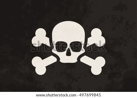 pirate flag with skull and