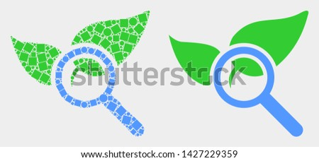 Pixel and flat search flora plant icons. Vector mosaic of search flora plant constructed of random small squares and spheric dots.