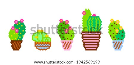 Pixel cacti. Vector illustration of cactus succulent aloe isolated on a white background. Geometric plants. Icons and silhouettes of cacti. Tropical plants, desert cacti. Abstract Decorative cactus