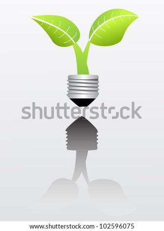 plant growing inside a light bulb
