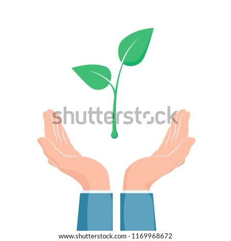 plant growth between two hands