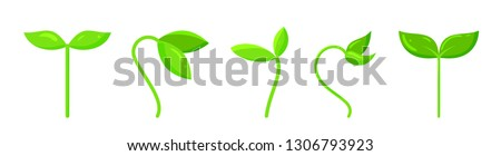 Plant icons set. Organic sign. Spring card design. Seedling kit. Sapling simple pictogram. Green grass cute poster. Nature symbol. Sprout growing banner. Flat style vector illustration isolated white ストックフォト ©