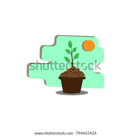 plant in the pot growing up