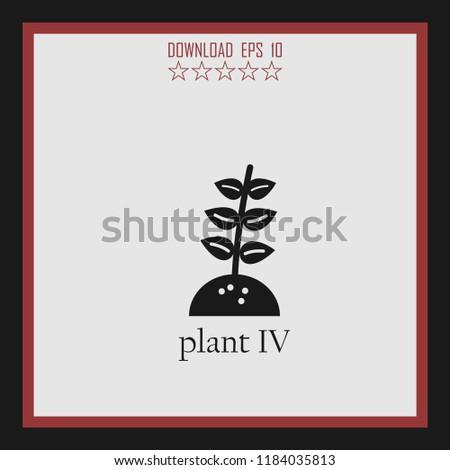 plant iv vector icon