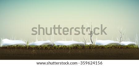 plant life under the snow