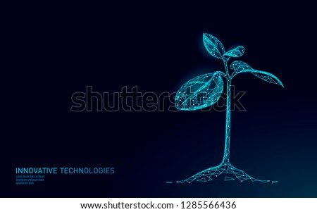 Plant sprout ecological abstract concept. 3D render seedling tree leaves. Save planet nature environment grow life eco polygon triangles low poly vector illustration
