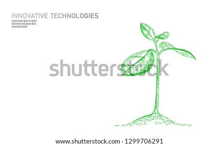 plant sprout ecological